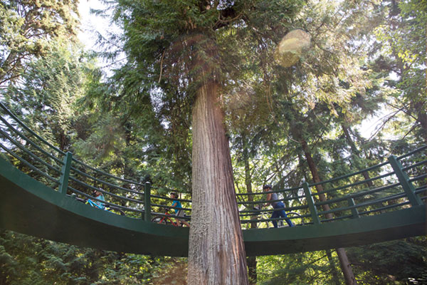 image-stanleypark-01